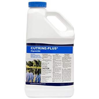 Cutrine Plus Gallon abc-1003