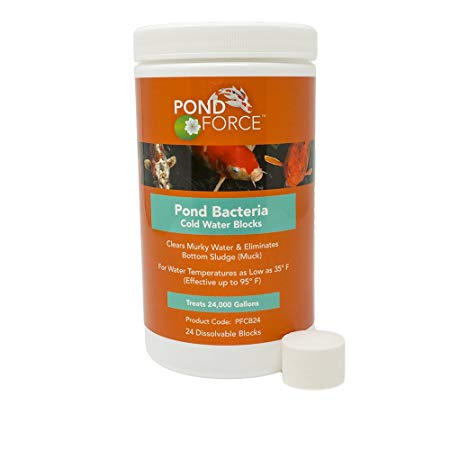 Pond Force Pond Bacteria Cold Water Blocks (Treats 24000 Gallons)